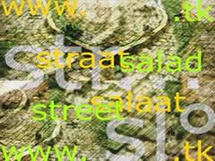 :::strÄÄtsalÄÄt ~strEEtsÄlÄd:::