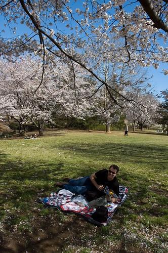 picnic break