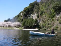 桜と鈴木くん