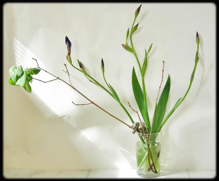 154--BINSENT-ikebana