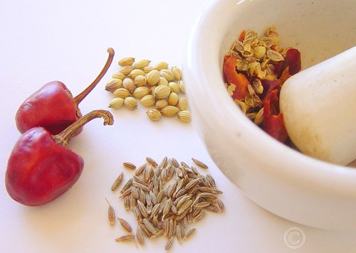 samosa spices
