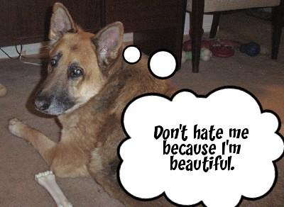 Max thought beautiful