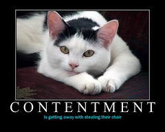 Contentment Is...