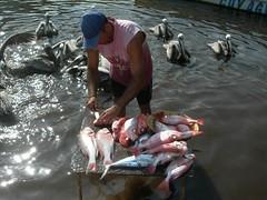 Cuyagua - Pescadores