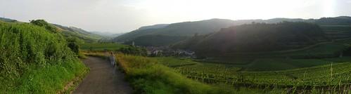 Grottenbachtal Kaiserstuhl I