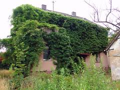 Haus in Dieburg