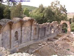 Nouveau Parc Archéologique en Tunisie 2204769_cac56966f8_m