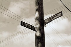 the corner of literary and professor
