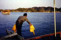 turkey_harbor