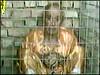634238_9f9faf59e9_t