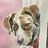 cogdogblog's photos tagged with dog