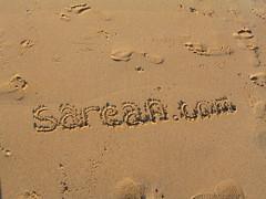 sarean.com  logo