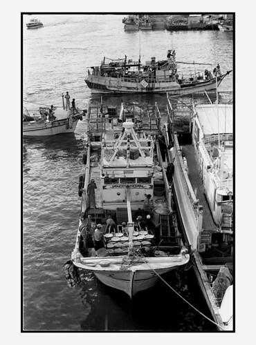 漁人‧碼頭 chinese and vietnamese fishermen in tamsui, northern taiwan
