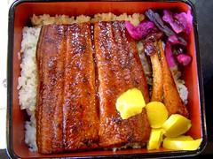 eel rice
