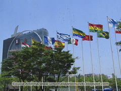 Bandeiras no COEX