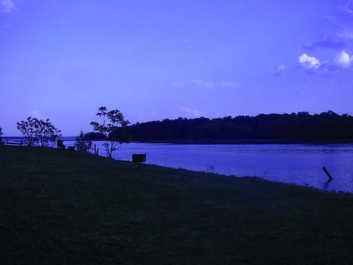 Shore Park  3