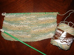 Washcloth in Progress