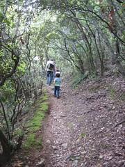 Trekking in Collserola