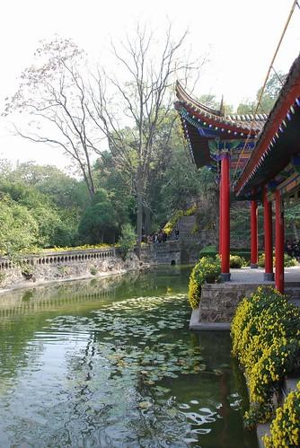 Huaqin Pool