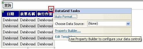 vs2005datagrid2