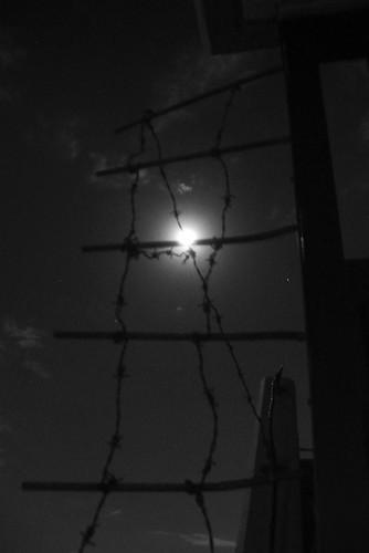 モノクロな月