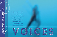 Voices06Poster