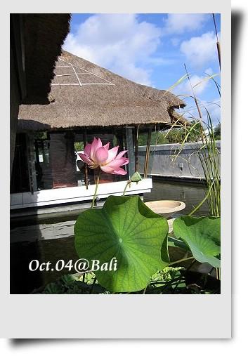 Bali-049