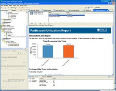 TIBCO Business Studio - simulation report