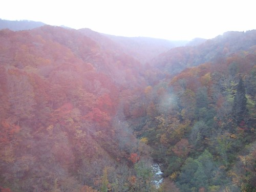 前往山寺的山路上