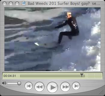 bwsf surfer boys