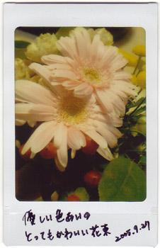 Bouquet #02