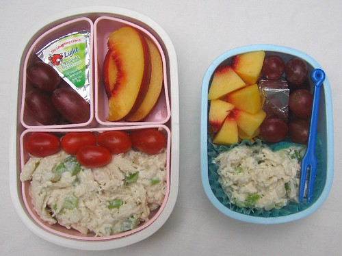 Chicken salad: mother/son bentos