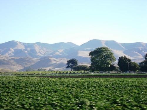 SLO hills