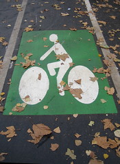 Paris cycle lane - photo from psd on flickr