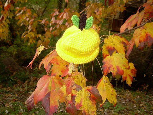 Lemon Baby Hat