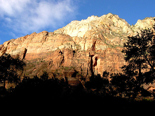 Early Morning in Zion Canyon