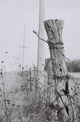kansas fence