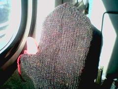 Knitten