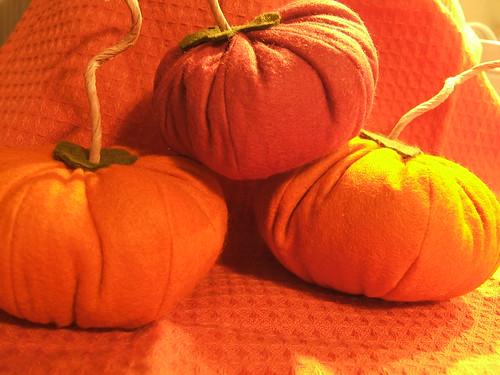 wooly pumpkins