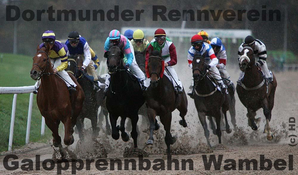 QL9T2536_Rennverein_Dortmund_1000