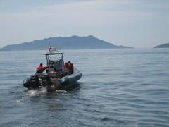 Whale watching in Washington State's San Juan Islands