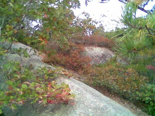 down a cliff