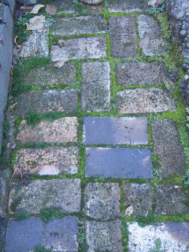 Mossy Brick Walkway