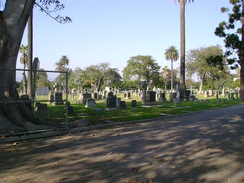 Woodlawn Cemetery (1 of 4)