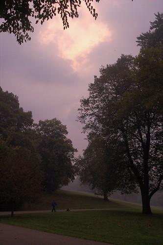 My Morning Meander