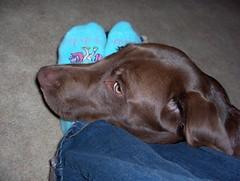 mom's feet 2