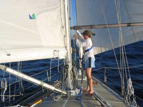 Ginger working mast