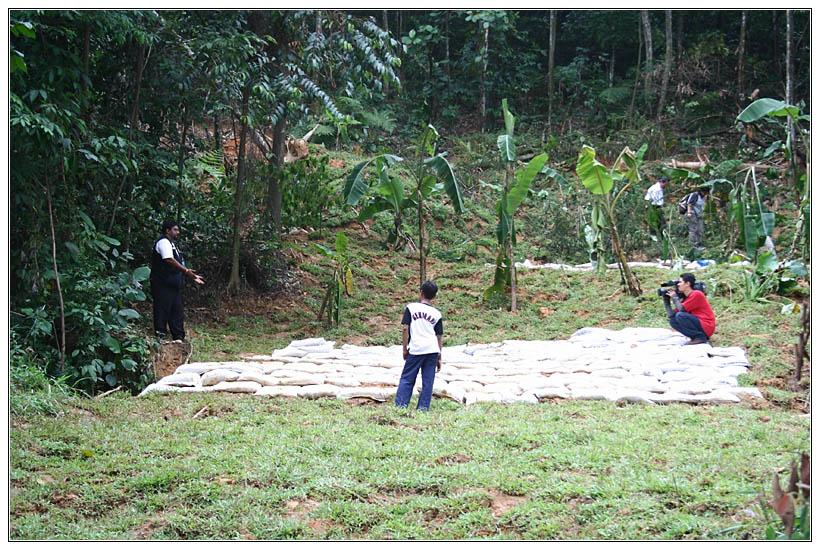 Save Bukit Gasing