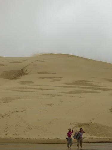 Big Ass Sand Dune