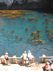 Visitors to Anacapa, the smallest of California's Channel Islands, admire the kelp beds before heading up to the lighthouse